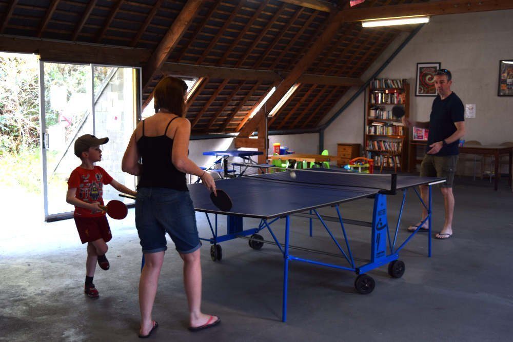 Family play table tennis