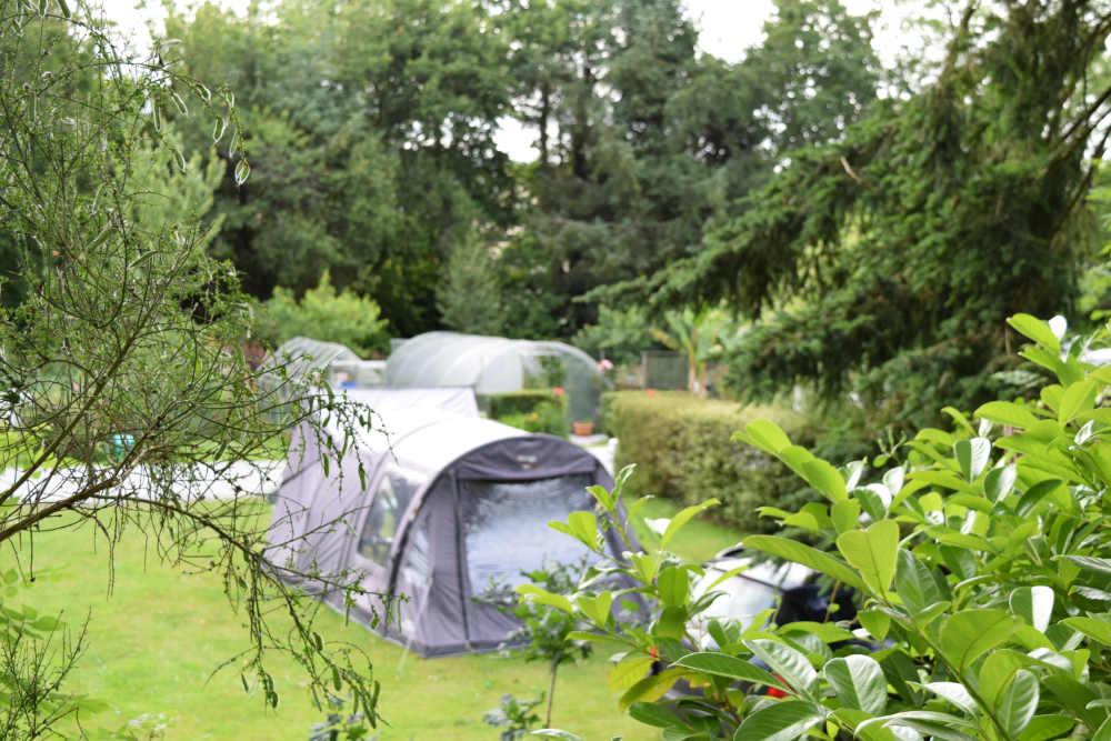 Camping amongst greenery