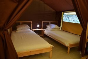 2 single beds in lodge tent